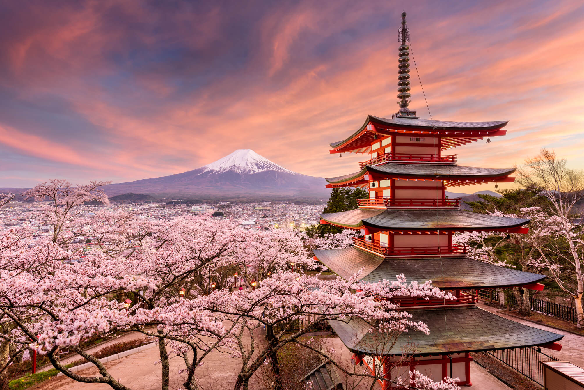 Le Japon Et Ses Cerisiers En Fleurs Circuit Et Croisiere Sur Le