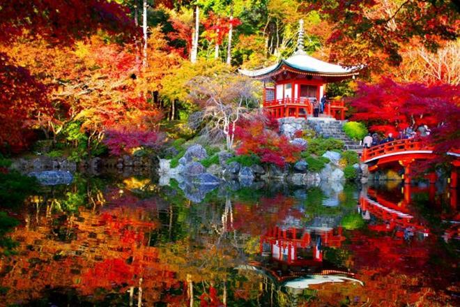 Le Japon: noblesse et esthétisme aux couleurs d'automne 2019 - Récit 02 |  Voyage Louise Drouin
